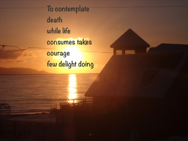 Wonder Haiku 1