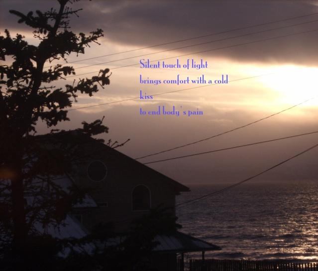 Wonder Haiku 3
