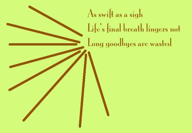 Wonder Haiku 54