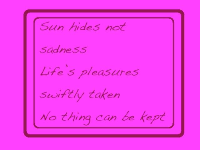 Wonder Haiku 64