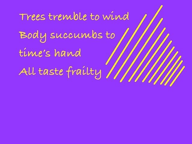 Wonder Haiku 70
