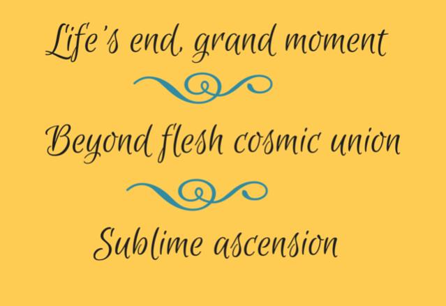 Wonder Haiku 84