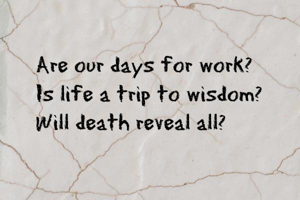 Wonder Haiku 98